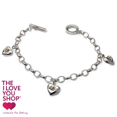 the_i_love_you_shop_celebratethefeeling_silver_and_gold_hearty_charm_bracelet_x